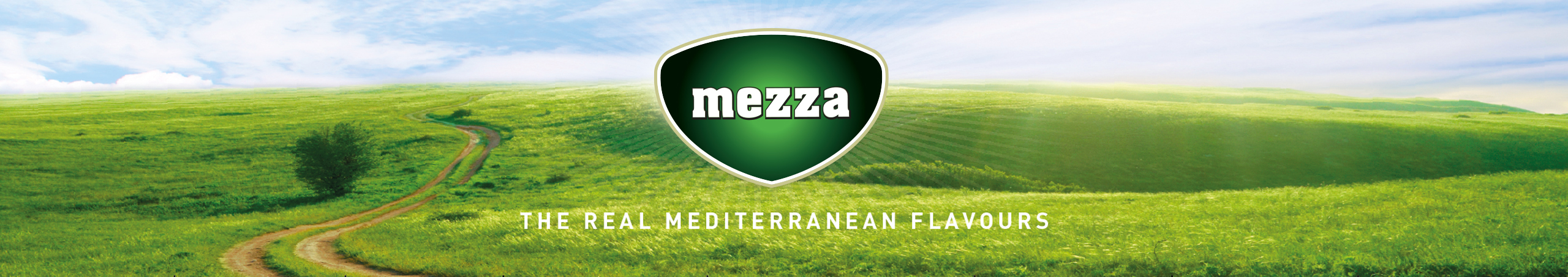 Mezza food